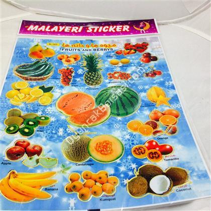 Meyve model sticker ,Toptan Satış