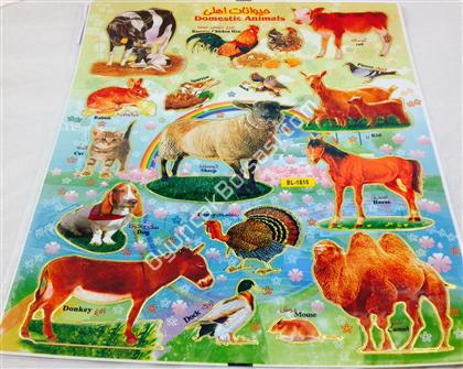 Evcil hayvanlar sticker ,Toptan Sat��