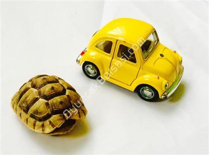 toptan oyuncak vos vos araba ,Toptan Satış