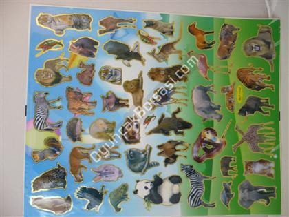 Toptan Sticker A4 Hayvanlar Model ,Toptan Satış