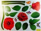 Sticker toptan duvar cxc-014, Toptan Satış