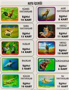 İlk 100 Hayvan Eğitici Kart, Toptan Satış fiyatları