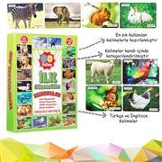 İlk 50 Hayvan Zeka Kartları, Toptan Satış fiyatları